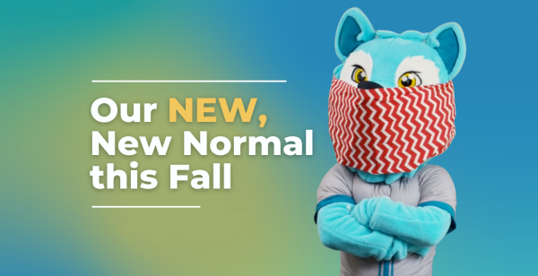 our new new normal